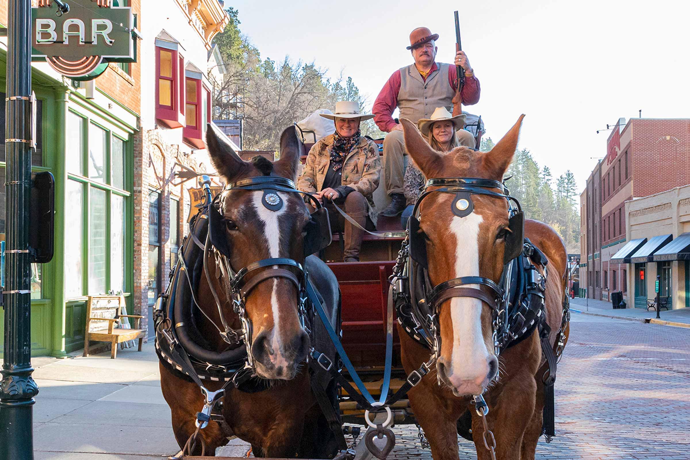 stagecoach rides